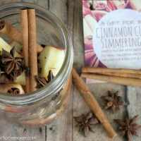 Cinnamon Clove Simmering Pot Recipe & Gift Tags