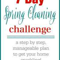 7 Day Spring Cleaning Challenge!