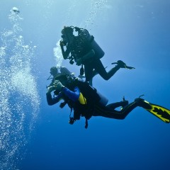 5 Pieces of Advice for Wannabe Professional Divers
