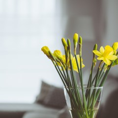 Tips to give your property a spring refresh