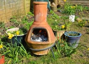 Terracotta Pots Are The Latest Garden Fashion