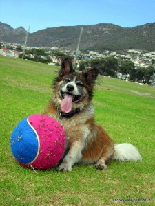 Macky and his favourite soccer ball
