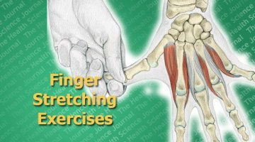 3 Finger Stretching Exercises to Improve Flexibility, Strength and Coordination and Bring Relief to Joints
