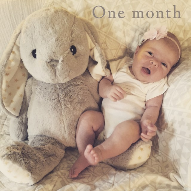 the hess station one month baby smile photo with stuffed animal prop bunny
