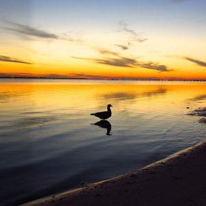 Sunset over Pensacola Bay  Day 1 Florida Trail Decemberhellip