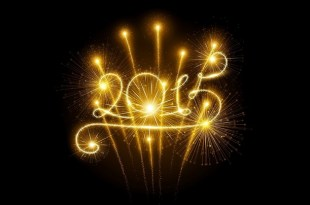 2015 best of ho