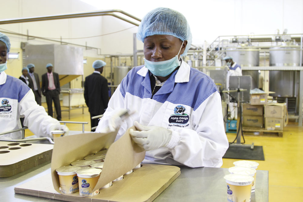 A worker at the Gushungo-dairy busy-at-work-during-Malawian-President Joyce Banda's visit in PIC-Aaron-.jpg