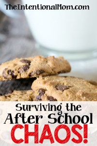 Surviving the After School Chaos