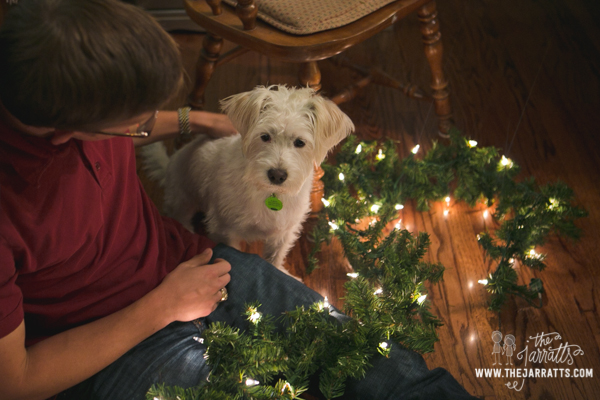 Albert helping his Uncle Mike work on the garland