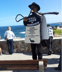 {Guest Blog} Hermanus Whale Festival – 9 Reasons to Visit