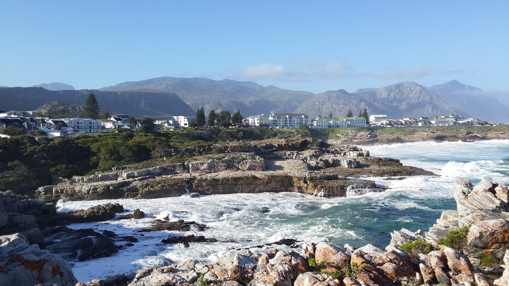 Hermanus Whale Festival - 9 Reasons to Visit - The Jax Blog
