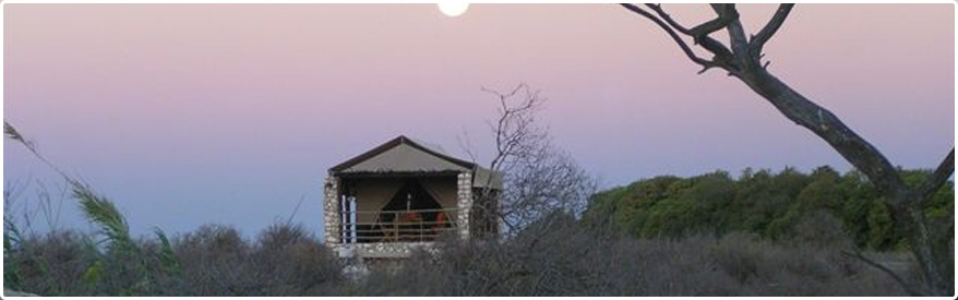 Glamping Nirvana at Thali Thali Game Lodge - The Jax Blog