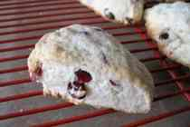 Lemon-Cranberry-Scones_512x384