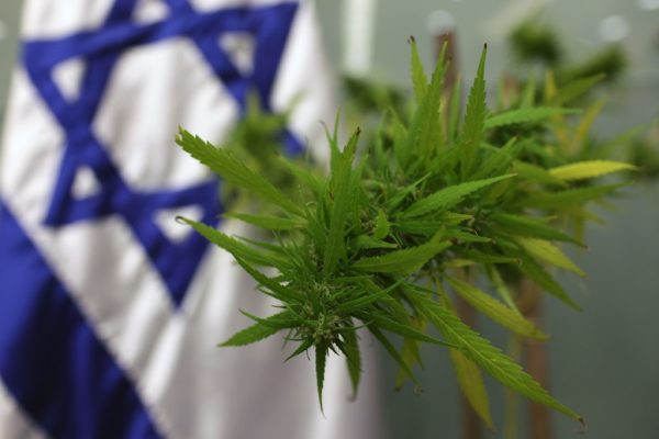 No Medical Value? US Govt has been Funding this Israeli Cannabis Researcher for 50 Years Medical-marijuana-e1474853291551
