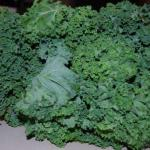 DSC 6914 150x150 Pick of the Week: Kale