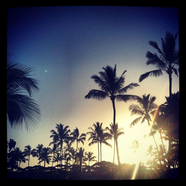 IMG 5865 Part 2: Maui