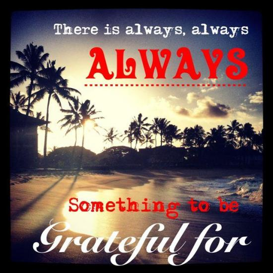 IMG 7135 Happy Thanksgiving