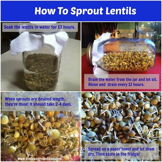 Learn how to sprout lentils! It's super easy and you can enjoy the added nutritional benefits with hardly any extra work!