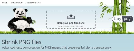 tinypng SEO 201: How to Optimize Images, Alt Tags + Page Speed