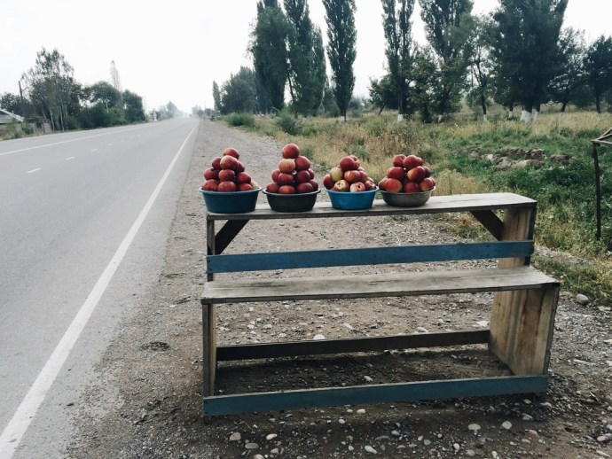 Kyrgyzstan credits Thelostavocado.com