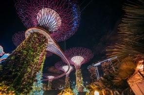 Primo viaggio del 2017: un mese in Asia