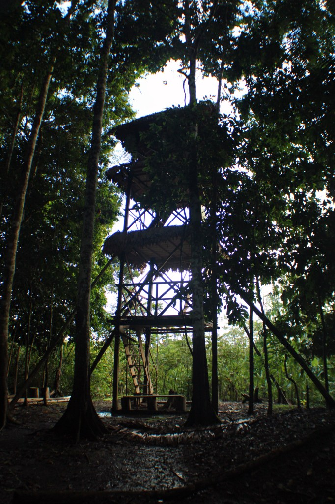 The huge three story tower in the middle of the jungle with an amazing view above the canopy.