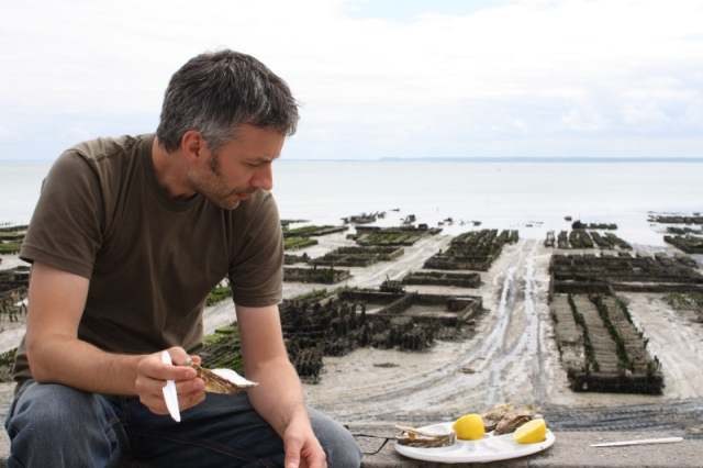 Cancale's oyster beds