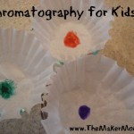 Paper Chromatography, A Guest Post
