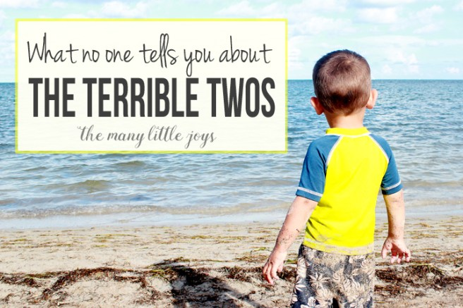What No One Tells You About the Terrible Twos 1