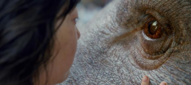 Elsewhere: Talkin' OKJA on The Unnamed Movie Podcast