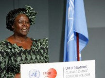 PIONEER OF THE POSSIBLE: The story of Kenyan Nobel Peace Prize Laureate Wangari Maathai