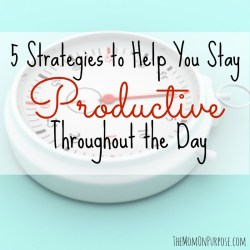 5 Strategies to Help You Stay Productive Throughout the Day
