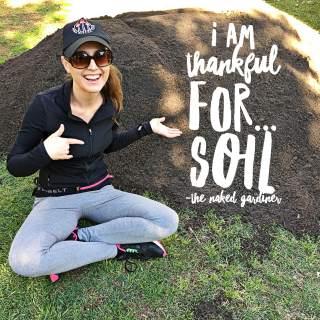 thankful-thursdays-soil-the-naked-gardiner-kathy-gardiner
