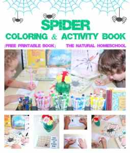 Spider Coloring & Activity Book {Free Printable Coloring Book}