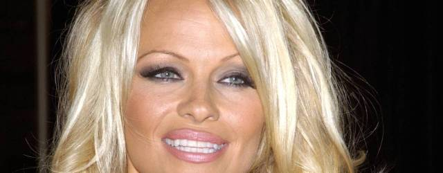 Hollywood star Pamela Anderson's account was allegedly used by a wireless store clerk in Nutley to 'obtain' a new cell phone and cell service.