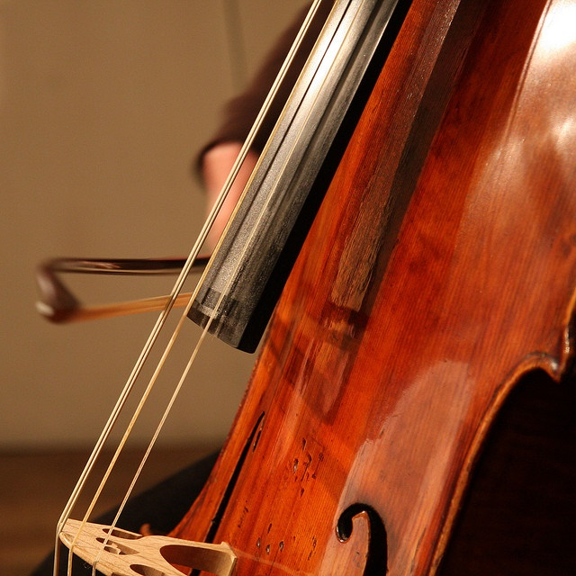 Human Frequency and Schumann Resonance (7.83 Hz)