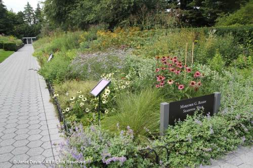Fantastic Marjorie Rosen York Botanical Oudolf Design Piet Oudolf Janet Davis Explores Colour Royal Gardens Nerlands Royal Dutch Gardens Phone Number