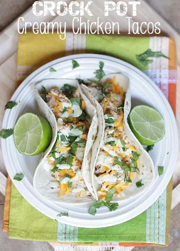 Crock Pot Creamy Chicken Tacos made with only 3 ingredients! Click here for recipe!