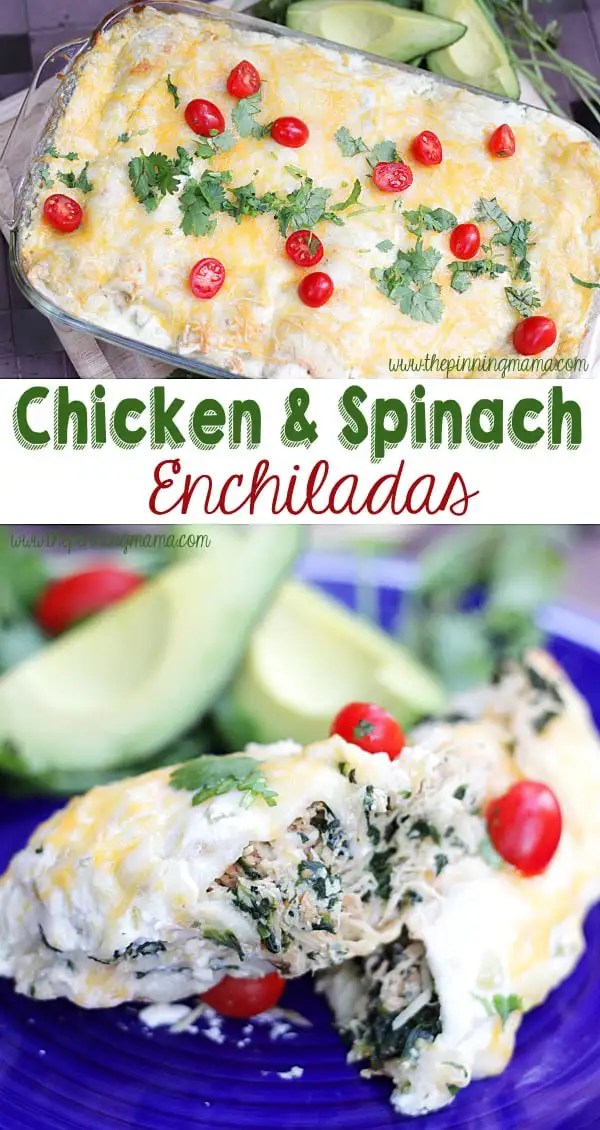 These chicken and spinach enchiladas are packed full of nutrition and so DELICIOUS!