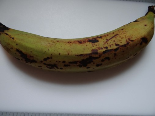 Start with a ripened plantain.
