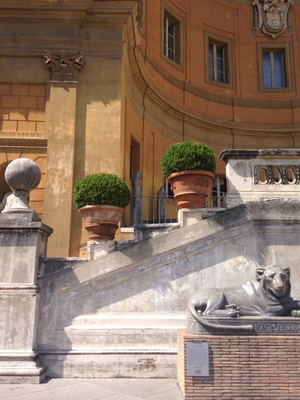 Boxwoods Vatican