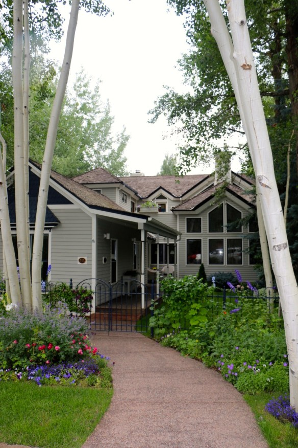 Aspen Trees lining the entry to CO Home