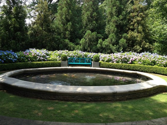 Boxwood Hydrangea and Bench via FB of Danielle Rollins