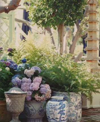 Beautiful Blue and White Potted Hydrangeas by Mary McDonald via Belcalire House