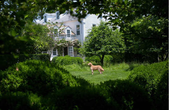 The Long Island Estate of the Party