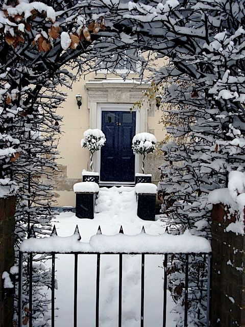 Beautiful snowy garden entry