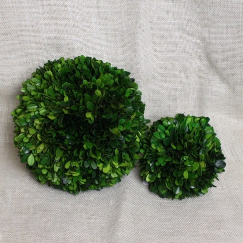 Preserved Boxwood Balls