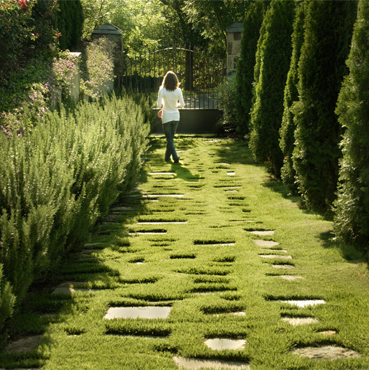 Hulsey Garden 20