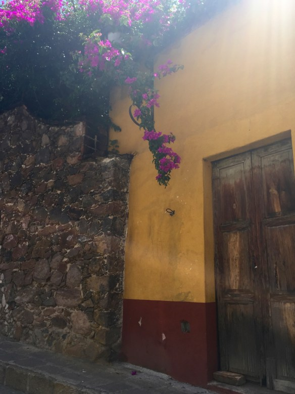 Doors of San Miguel by The Potted Boxwood 17