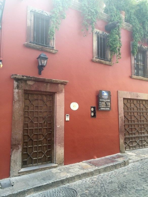 Doors of San Miguel by The Potted Boxwood 31